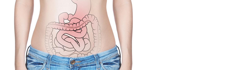 qilucru-slider-intestins